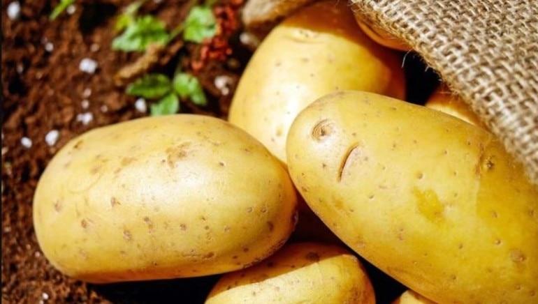 बटाटा हे पोषक तत्वांचा खजिना आहे.  प्रतिमा: शटरस्टॉक