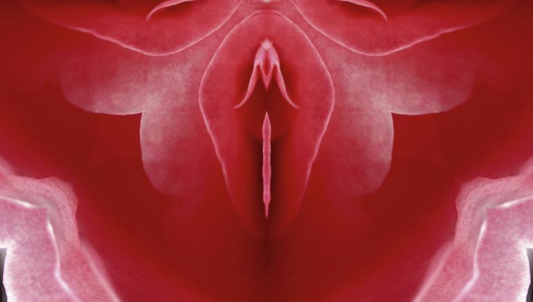 """Your """"vagina"""" is actually the vulva and here is what you need to understand about its anatomy"""