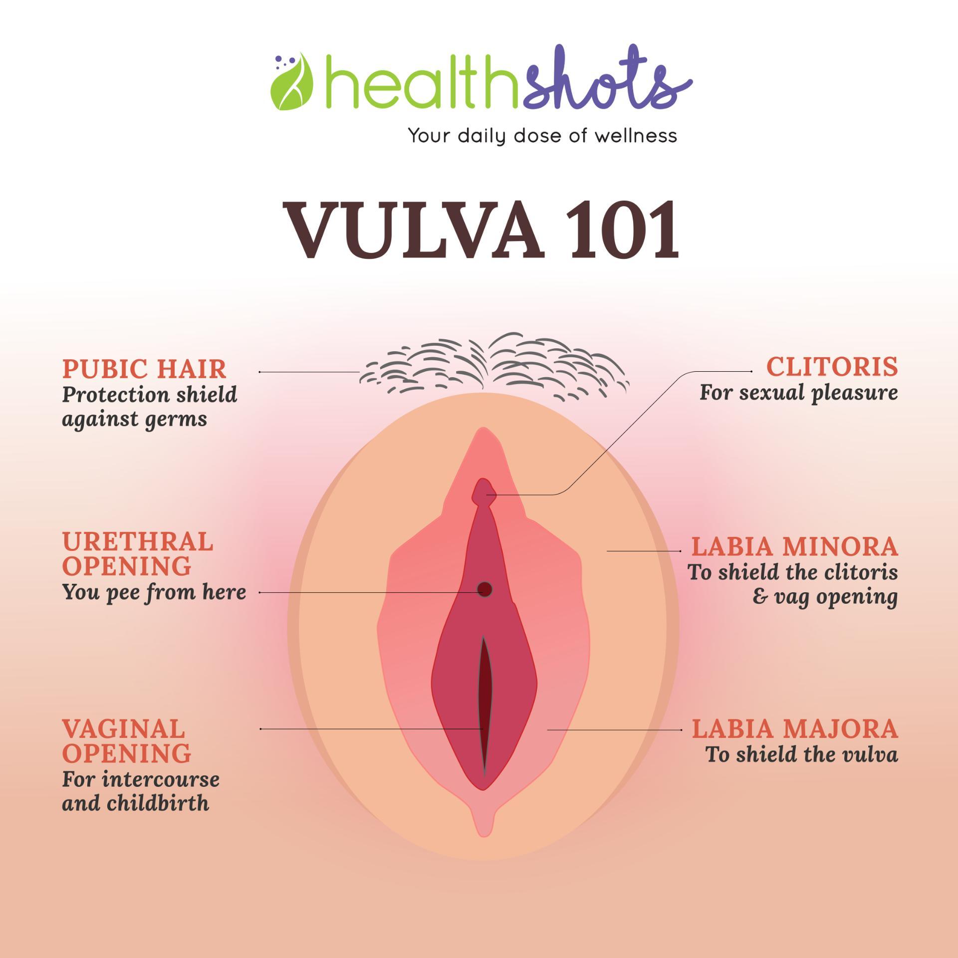 Vagina On Apple Books