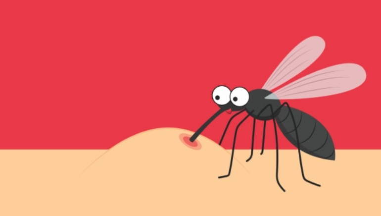 Had dengue before? Study suggests you might have some immunity against covid-19