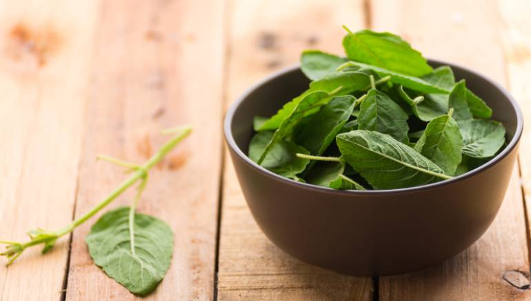Consume tulsi on an empty stomach for these 9 powerful benefits